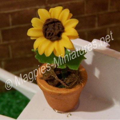 Single Flower - Yellow Sunflower