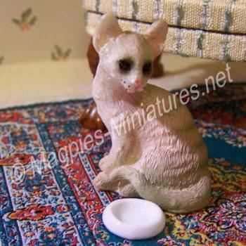 Pet feeding Bowl White