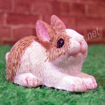 Rabbit -K