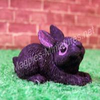 Rabbit -L