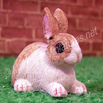 Rabbit -H