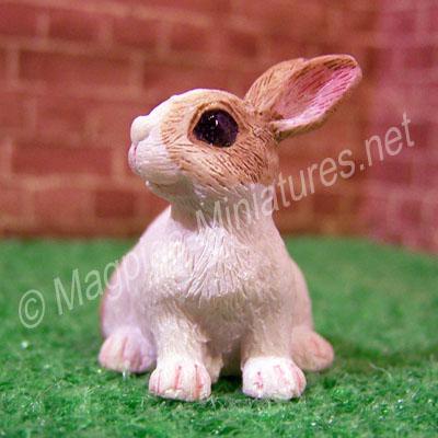 Rabbit -E