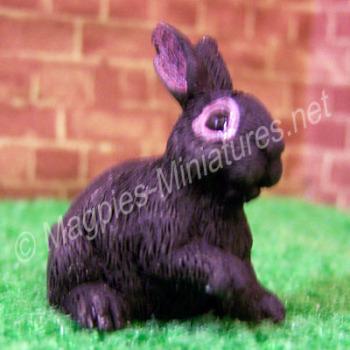 Rabbit -C