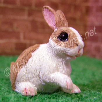 Rabbit -B