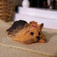 Laying Yorkshire Terrier - 1:24 24th OR 1:12 12th scale