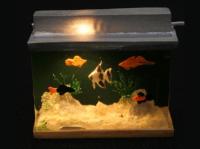 Large Fish Tank - Lights Up!
