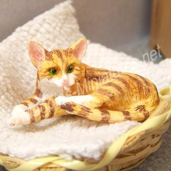 Ginger Cat Licking Leg