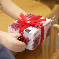 Wrapped Present- no contents