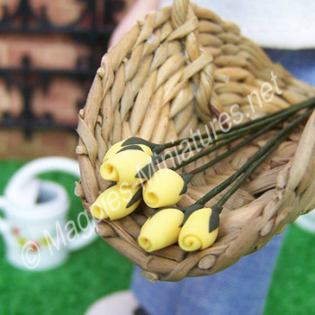 Set Of 6 Flower Buds Yellow