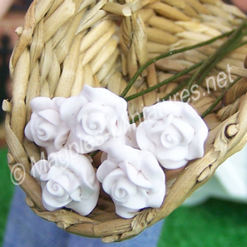 Set Of 6 Single Roses White-REDUCED TO CLEAR-DAMAGED