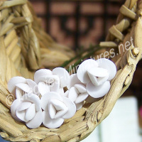 Set Of 6 Small Flowers White