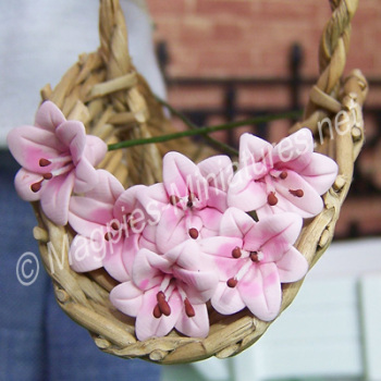 Set Of 6 Singles Lilies Pink-REDUCED TO CLEAR-DAMAGED