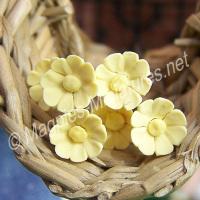 Set Of 6 Single Daisies Yellow