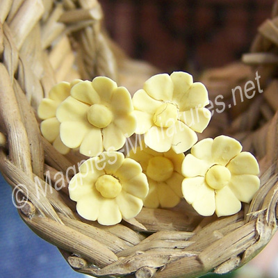 Set Of 6 Single Daisies Yellow