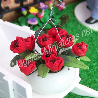 Hanging planter of red flowers