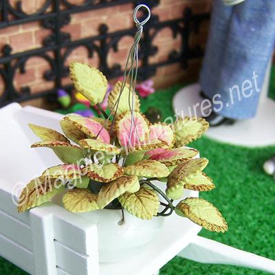 Hanging Plant in Ceramic Bowl