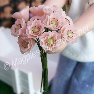 Pink Poppy Bouquet