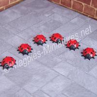 6 Ladybirds / Ladybugs