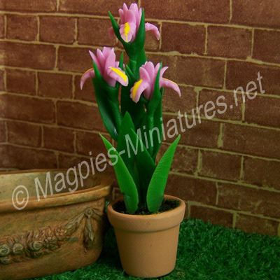 Tall Flower - Pink