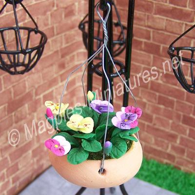 Pansies In Hanging Basket