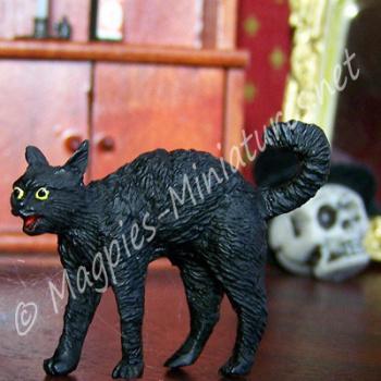 Black Cat - Spooky !