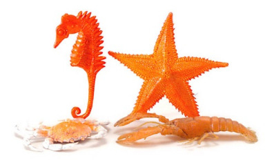 At The Seaside - Set of 4 Sea Creatures Oversized