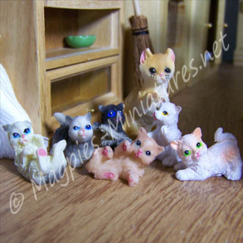 Kitten (Assorted Colours) 1 Piece