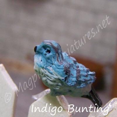 ga249 garden bird - indigo bunting