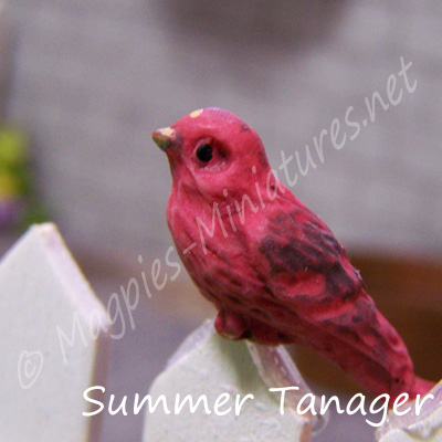 ga249 garden bird - summer tanager
