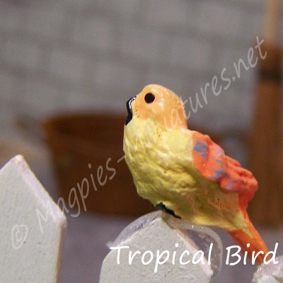 ga249 garden bird - tropical