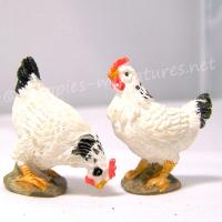 2 Speckled Hens