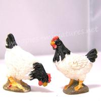 2 Black and White Hens