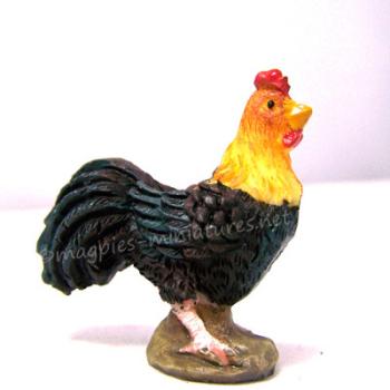 Cockerel - Rooster
