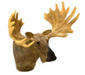 Wall Mount Moose Head Trophy