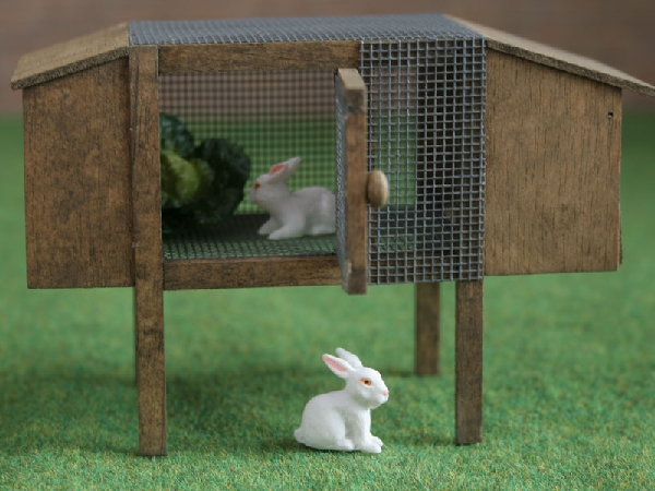 Rabbit Hutch with 2 Rabbits