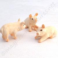 Piglets, Set Of 3