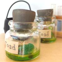 Halloween Toad Jar