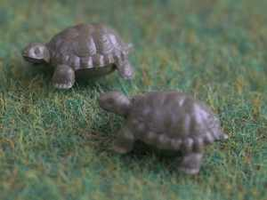 Set Of 6 Plastic Tortoises
