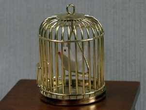 Birdcage and bird - does not open
