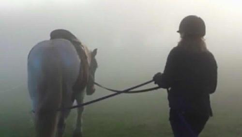 Ally long lining in mist