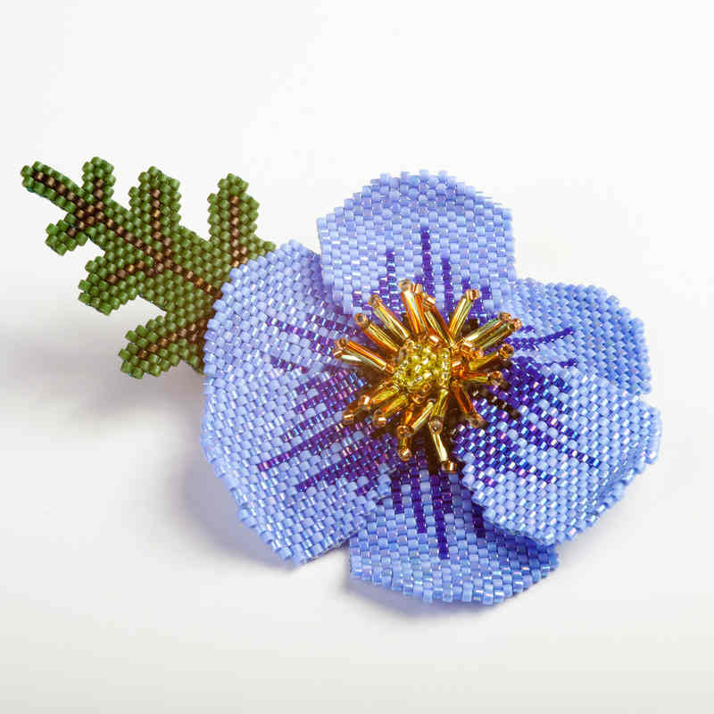 Blue_Purple_Poppy[1]