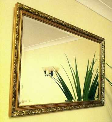 Dahlia Ornate 36X24 Framed Bevelled Mirror