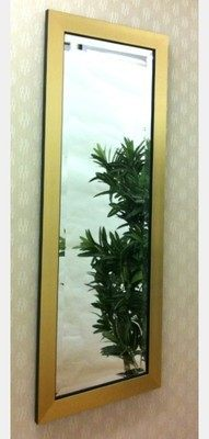 Flat Gold Framed 12X36 Bevelled Mirror