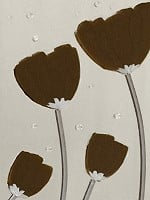 Brown Poppies