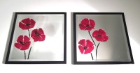 Red Poppy Trio Picture