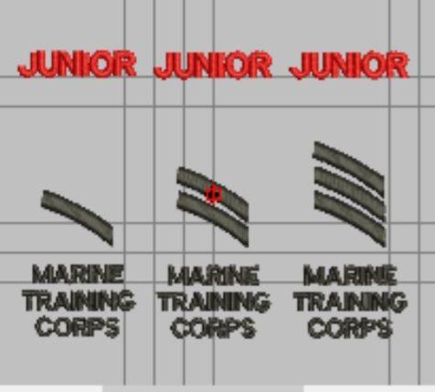 Junior Cadet Ranks for MTC