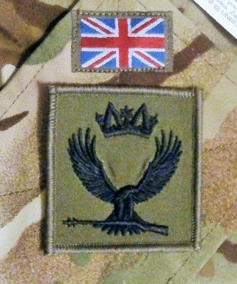 The ACCSATT Badge