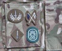 Advanced APC Badges