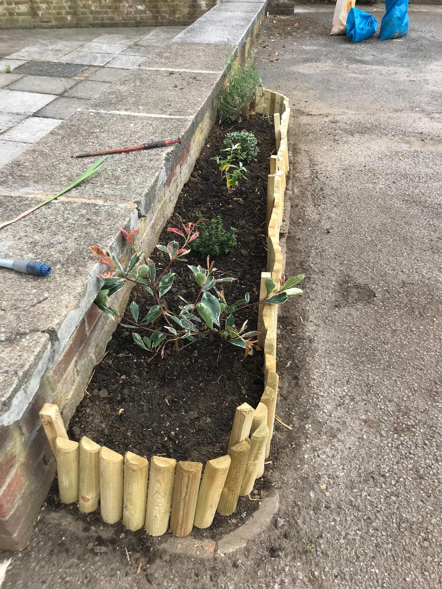 Garden border 1