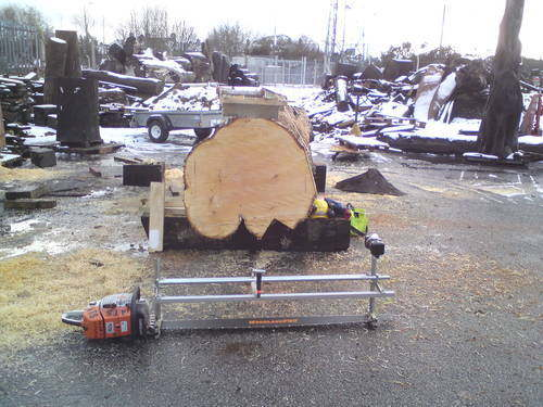 alaskan 5ft with log